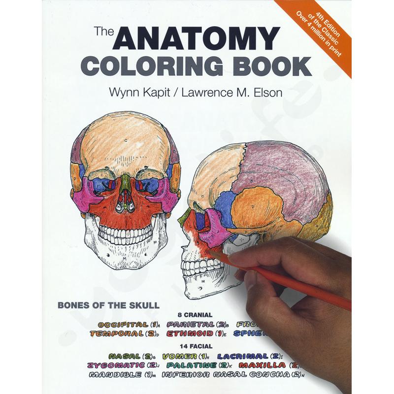 Anatomy coloring book – Kapit, W. & Elson, L.
