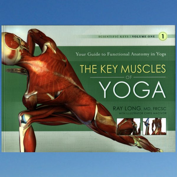 The key muscles of yoga  – Ray Long